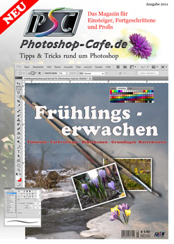 http://www.photoshop-cafe.de/contest/Covercontest011/15s.jpg