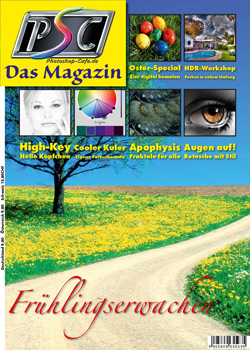 http://www.photoshop-cafe.de/contest/Covercontest011/19s.jpg