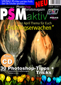http://www.photoshop-cafe.de/contest/Covercontest011/21s.jpg