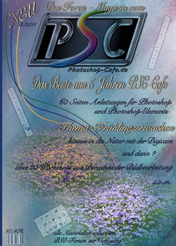 http://www.photoshop-cafe.de/contest/Covercontest011/22s.jpg