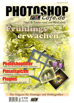 http://www.photoshop-cafe.de/contest/Covercontest011/9s.jpg
